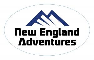 Small NEA Logo