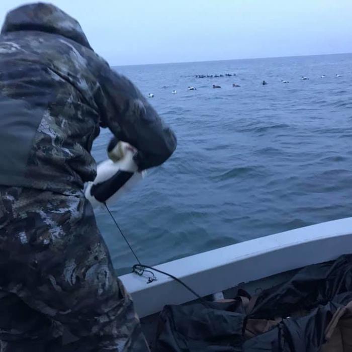 Sea Duck Hunt 2018