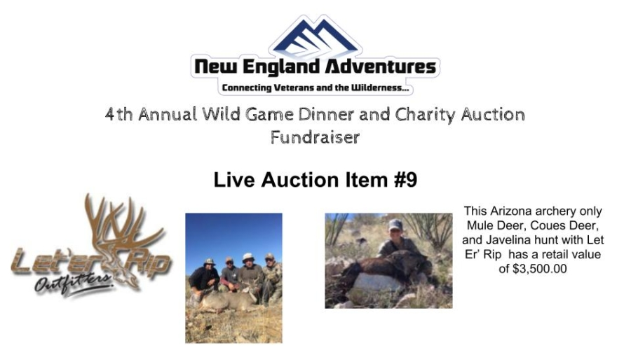 2019 Auction #9
